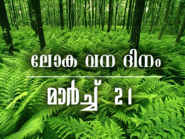 ലോക വനദിനം – മാര്ച്ച് 21