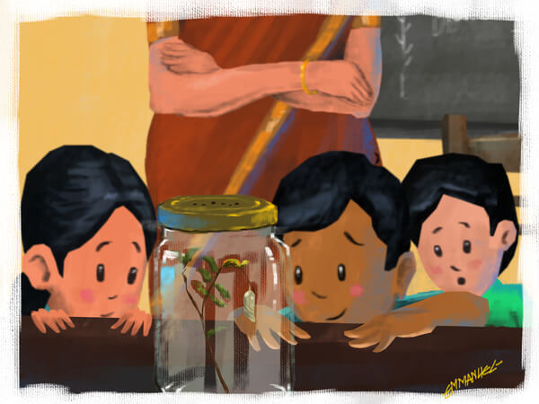 പ്രകൃതി നടത്തം